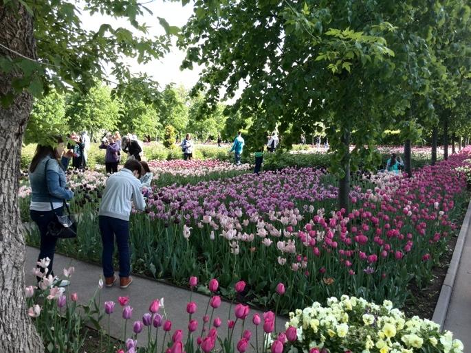 Romantik von Blumen und Schreibwaren