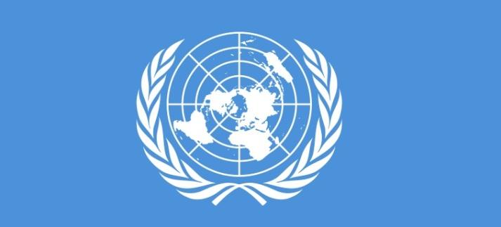 Moskau und Peking unterstützen Resolution des UN-Sicherheitsrates zu Afghanistan nicht
